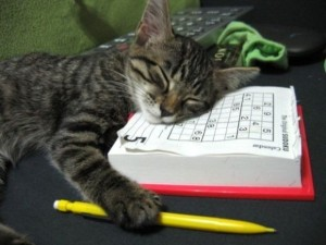 Sweet Dream Sudoku